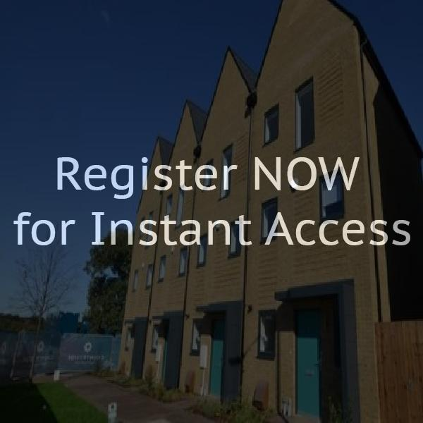 Flats to rent in harlow essex