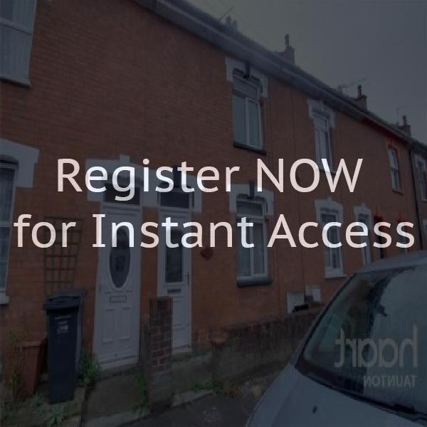 Houses to let in bridgwater